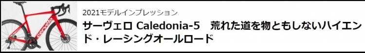 カレドニア5インプレ.jpg
